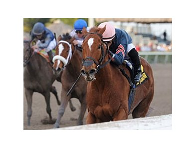 Golden Mystery
