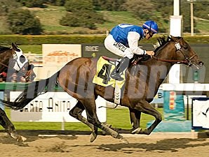 In Summation flies to victory in track-record time in the El Conejo.