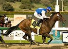 "Synthetic track standout In Summation heads the $150,000 Palos Verdes Handicap.<br><a target=""blank"" href=""http://www.bloodhorse.com/horse-racing/photo-store?ref=http%3A%2F%2Fpictopia.com%2Fperl%2Fgal%3Fprovider_id%3D368%26ptp_photo_id%3D3182652%26ref%3Dstory"">Order This Photo</a>"