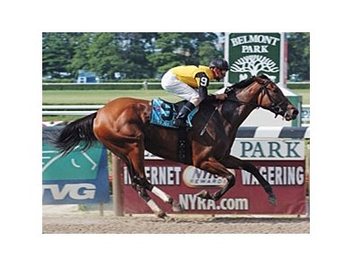 "Four-time graded stakes winner Dream Rush has proven she is the one to beat in the Vagrancy Handicap.<br><a target=""blank"" href=""http://www.bloodhorse.com/horse-racing/photo-store?ref=http%3A%2F%2Fpictopia.com%2Fperl%2Fgal%3Fprovider_id%3D368%26ptp_photo_id%3D1641247%26ref%3Dstory"">Order This Photo</a>"