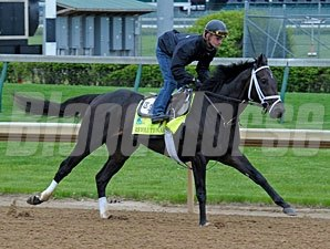 Revolutionary works at Churchill Downs 4/27/2013.