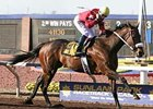 Peppers Pride won her 15th consecutive race March 23, capturing the $100,000 Sydney Valentini Handicap at Sunland Park.