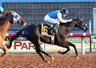 Forest Mouse wins the Zia Park Distance Championship Handicap.