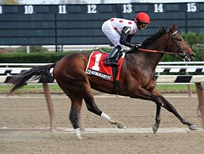 Bernardini Impresses as First-Crop Sire