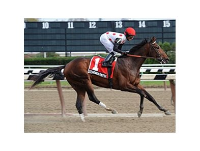 "Nashua winner To Honor and Serve is the latest graded stakes winner for Bernardini.<br><a target=""blank"" href=""http://www.bloodhorse.com/horse-racing/photo-store?ref=http%3A%2F%2Fpictopia.com%2Fperl%2Fgal%3Fprovider_id%3D368%26ptp_photo_id%3D9267506%26ref%3Dstory"">Order This Photo</a>"
