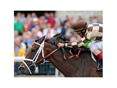 "Embur's Song won the Doubledogdare Keeneland during the spring meet. <br><a target=""blank"" href=""http://www.bloodhorse.com/horse-racing/photo-store?ref=http%3A%2F%2Fpictopia.com%2Fperl%2Fgal%3Fprovider_id%3D368%26ptp_photo_id%3D9500483%26ref%3Dstory"">Order This Photo</a>"