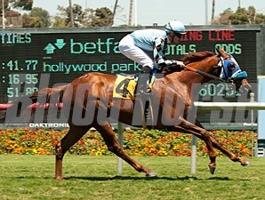 Dhaamer wins the Sunset Handicap.