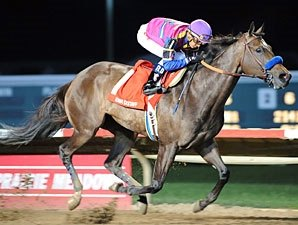 Fast Fillies Lined Up for Chilukki Stakes