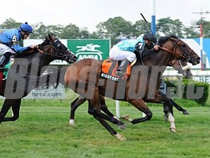 Right One wins the 2011 Jaipur