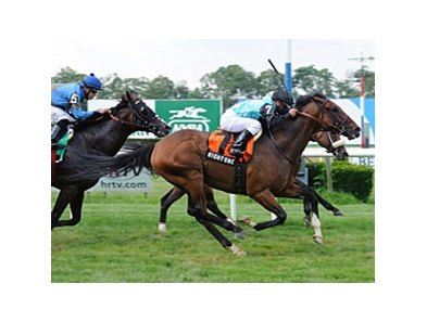 Right One gets up late to win the Jaipur Stakes at Belmont.