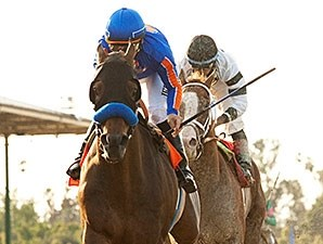 Game On Dude wins the 2014 Santa Anita Handicap.
