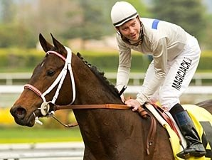 Carlsbad Faces Tough Bunch in Hollywood Oaks