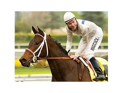 "Carlsbad and Tyler Baze return to the winners' circle after capturing the Santa Paula Stakes at Santa Anita. <br><a target=""blank"" href=""http://www.bloodhorse.com/horse-racing/photo-store?ref=http%3A%2F%2Fgallery.pictopia.com%2Fbloodhorse%2Fgallery%2F69713%2Fphoto%2F7959796%2F%3Fo%3D0"">Order This Photo</a>"