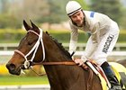"Carlsbad faces a strong field in the Hollywood Oaks.<br><a target=""blank"" href=""http://www.bloodhorse.com/horse-racing/photo-store?ref=http%3A%2F%2Fpictopia.com%2Fperl%2Fgal%3Fprovider_id%3D368%26ptp_photo_id%3D7959796%26ref%3Dstory"">Order This Photo</a>"