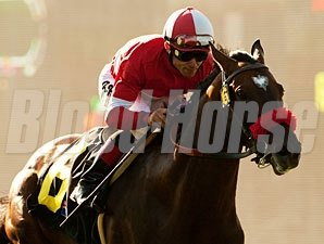 Acclamation wins the 2011 Eddie Read.
