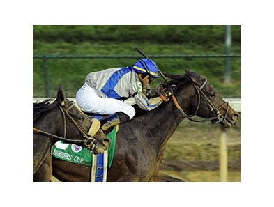 "2010 Breeders' Cup Classic winner Blame<br><a target=""blank"" href=""http://www.bloodhorse.com/horse-racing/photo-store?ref=http%3A%2F%2Fpictopia.com%2Fperl%2Fgal%3Fprovider_id%3D368%26ptp_photo_id%3D9267695%26ref%3Dstory"">Order This Photo</a>"