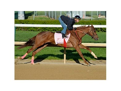 "Rose to Gold went 4 furlongs in :47 4/5.<br><a target=""blank"" href=""http://photos.bloodhorse.com/TripleCrown/2013-Triple-Crown/Kentucky-Derby-Workouts/29026796_jvcnn8#!i=2478290436&k=2RVkcLF"">Order This Photo</a>"