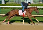 Rose to Gold Lone Friday Oaks Worker