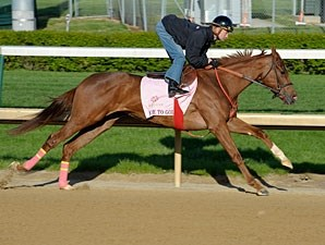 Rose to Gold - Churchill Downs, April 26, 2013.