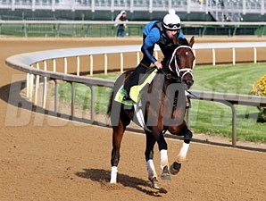 Palace Malice - Churchill Downs, May 2, 2013.