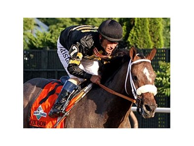 "Oxbow<br><a target=""blank"" href=""http://photos.bloodhorse.com/TripleCrown/2013-Triple-Crown/Belmont-Stakes-145/29744699_jpqpwR#!i=2563141380&k=ZB5D55S"">Order This Photo</a>"