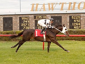 Romacaca wins the 2012 Indian Maid.