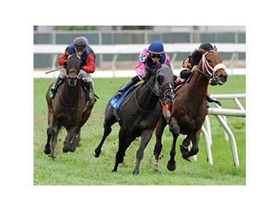 Optimizer (right) makes his move on the inside to win the Fair Grounds Handicap.