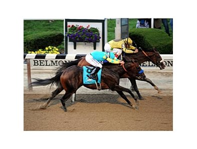 Paynter in the Belmont Stakes.