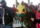 Rapid Redux Questionable For Jan. 4 Start