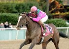Denis of Cork leads a field of seven in the Illinois Derby (gr. II) at Hawthorne April 5.