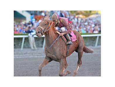 "Ice Box<br><a target=""blank"" href=""http://www.bloodhorse.com/horse-racing/photo-store?ref=http%3A%2F%2Fpictopia.com%2Fperl%2Fgal%3Fprovider_id%3D368%26ptp_photo_id%3D8849972%26ref%3Dstory"">Order This Photo</a>"