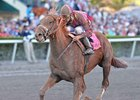 Zito Works Three at Saratoga