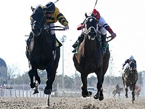 Double Espresso with James Graham up (left) edges Dubai Majesty with Jamie Theriot aboard to win the Pan Zareta Stakes at Fair Grounds in New Orleans, LA.