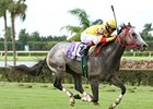 Turf Million First Big Event at Calder