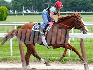 Shackleford - Belmont, June 4, 2011.