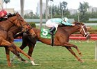 "Channel Lady leads them home in the Suwannee River Stakes.<br><a target=""blank"" href=""http://photos.bloodhorse.com/AtTheRaces-1/at-the-races-2013/27257665_QgCqdh#!i=2357856325&k=DbmpDqP"">Order This Photo</a>"
