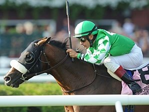 Winchester Withdrawn from Turf Consideration