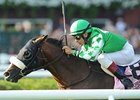 "Four-time grade I winner Winchester faces 10 in the  W.L. McKnight Handicap.<br><a target=""blank"" href=""http://www.bloodhorse.com/horse-racing/photo-store?ref=http%3A%2F%2Fpictopia.com%2Fperl%2Fgal%3Fprovider_id%3D368%26ptp_photo_id%3D9634334%26ref%3Dstory"">Order This Photo</a>"