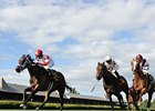 "Watsdachances (middle) and Tapicat (right) finished 2nd and 3rd in the Lake George.<br><a target=""blank"" href=""http://photos.bloodhorse.com/AtTheRaces-1/at-the-races-2013/27257665_QgCqdh#!i=2655205994&k=nmSF2W7"">Order This Photo</a>"