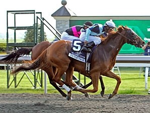Pachattack wins the 2012 Doubledogdare.