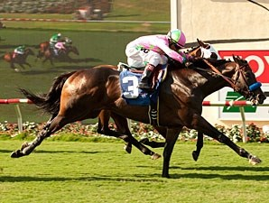 Midnight Crooner wins the 2012 Oceanside Stakes.