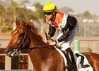 Old Time Hockey won the 2012 La Jolla Handicap.