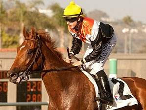 Old Time Hockey wins the 2012 La Jolla.