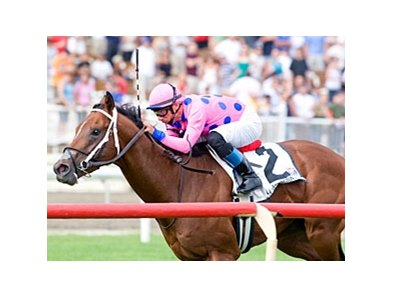 Tizdejavu will be after his fourth consecutive victory on the turf in the Secretariat Stakes.