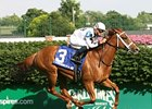 Champion Dreaming of Anna Retired