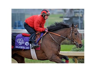 "Goldikova<br><a target=""blank"" href=""http://www.bloodhorse.com/horse-racing/photo-store?ref=http%3A%2F%2Fpictopia.com%2Fperl%2Fgal%3Fprovider_id%3D368%26ptp_photo_id%3D9263161%26ref%3Dstory"">Order This Photo</a>"