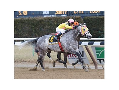 "Head Heart Hoof took powers home to victory in the Toboggan Handicap.<br><a target=""blank"" href=""http://photos.bloodhorse.com/AtTheRaces-1/at-the-races-2013/27257665_QgCqdh#!i=2347673694&k=GLFwVgQ"">Order This Photo</a>"