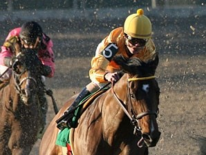 Trubs wins the 2011 Black Gold Stakes.