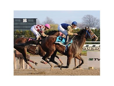 "Cherokee Country gets up late to take the Fall Highweight.<br><a target=""blank"" href=""http://www.bloodhorse.com/horse-racing/photo-store?ref=http%3A%2F%2Fpictopia.com%2Fperl%2Fgal%3Fprovider_id%3D368%26ptp_photo_id%3D8655473%26ref%3Dstory"">Order This Photo</a>"