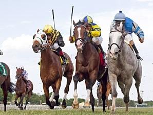 Cozzetti  wins the 2012 American Derby.